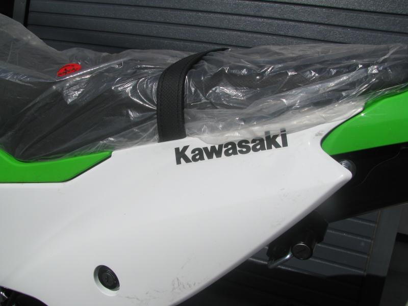 新車 カワサキ KLX230 グリーン サイドカバーデカール
