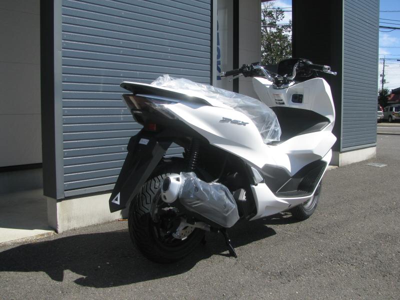 新車バイク ホンダ PCX125 ホワイト 右うしろ側